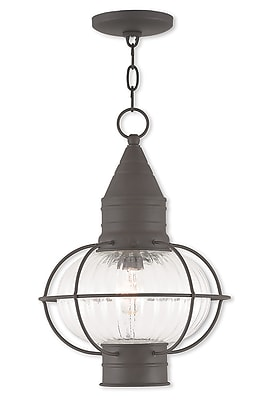 Livex Lighting 1-Light Bronze Pendant with Hand Blown Fluted Clear Glass (27006-07)
