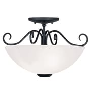 Livex Lighting 2-Light Black Mount with Hand Blown Satin White Glass (4461-04)
