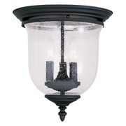 Livex Lighting 3-Light Black Mount with Hand Blown Clear Seeded Glass (5024-04)