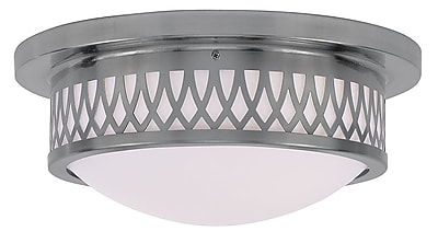 Livex Lighting 2-Light Brushed Nickel Mount with Hand Blown Satin White Glass (7352-91)