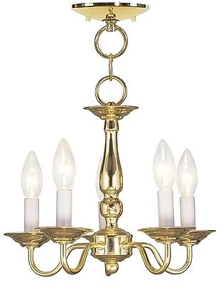 Livex Lighting 5-Light Polished Brass Chandelier (5011-02)