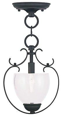 Livex Lighting 1-Light Black Convertible Chandelier with Hand Blown Clear Water Glass (4800-04)