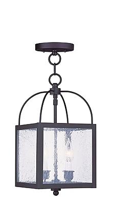 Livex Lighting 2-Light Bronze Pendant with Seeded Glass Shade (4045-07)