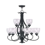 Livex Lighting 9-Light Black Chandelier with Hand Blown Clear Water Glass (4809-04)
