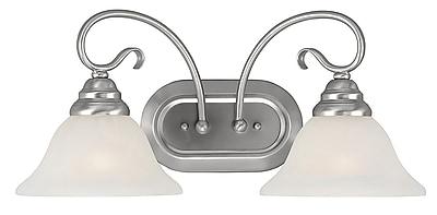 Livex Lighting 2-Light Brushed Nickel Bath Vanity Light (6102-91)