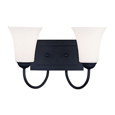 Livex Lighting 2-Light Black Bath Light with Hand Blown Satin Opal White Glass (6482-04)