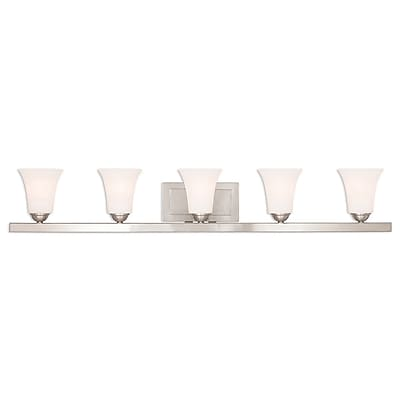 Livex Lighting 5-Light Brushed Nickel Bath Light (6485-91)