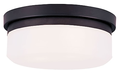 Livex Lighting 2-Light Bronze Mount or Wall Mount with Hand Blown Satin White Glass (7391-07)