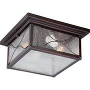 Satco Incandescent 2-Light Classic Bronze Flush Mount with Clear Seed Glass Shades (STL-SAT656163)
