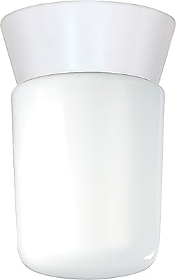 Satco Incandescent 1-Light White Flush Mount with White Globe Glass Shade (STL-SAT775338)
