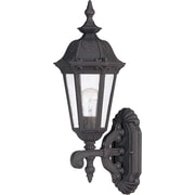 Satco Incandescent 1-Light Satin Iron Ore Wall Lantern with Seeded Mist Glass Shade (STL-SAT620355)