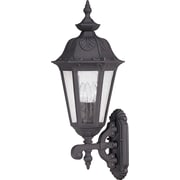 Satco Incandescent 3-Light Satin Iron Ore Wall Lantern with Seeded Mist Glass Shades (STL-SAT620317)