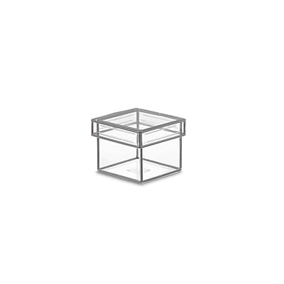 Design Ideas Lookers Box, Tiny, Clear (165301)