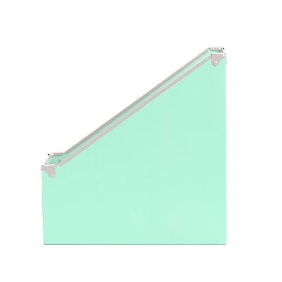 Design Ideas Paperboard Frisco Magazine File, Mint (3060632)