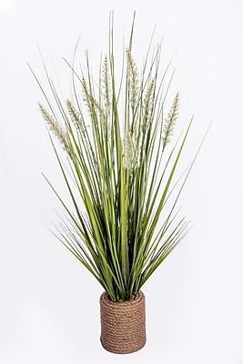 "Laura Ashley Onion Grass in Rope Vase 40""H (VHA102454)"