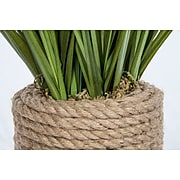 """Vintage Home Onion Grass in Rope Vase 40""""H (VHA102454)"""