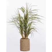 "Laura Ashley Plastic Grass in Rope Vase 30""H  (VHA102455)"