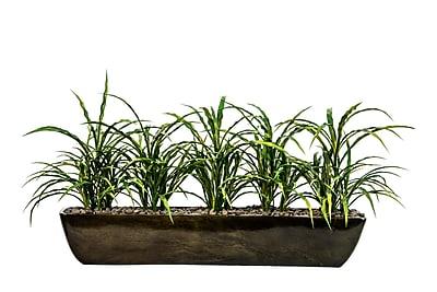Laura Ashley Plastic Grass in Resin Vase 15