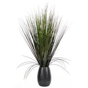 "Laura Ashley 30"" Tall Grass with Twigs in Black Ceramic Pot (23x23x30H"") (VHA102437-BLK)"