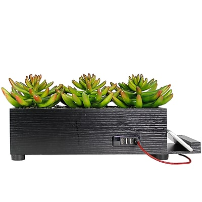 Vintage Home 4 Port Black Succulent Charging Station (VHA102482.BLK)