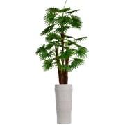 "Vintage Home 87"" Tall Fan Palm Tree, Burlap Kit and Fiberstone Planter (VHX129218)"