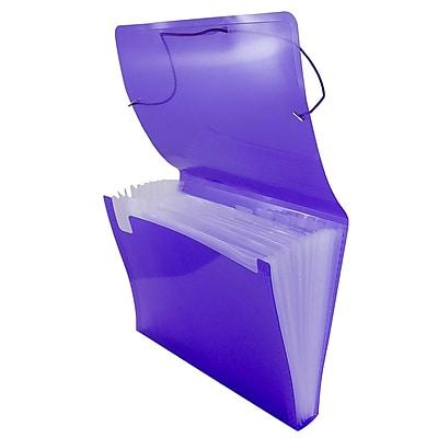 JAM Paper® Accordion Folders, Plastic 13 Pocket Expanding File, Letter, 9 x 13, Purple, 24/Pack (340334203b)