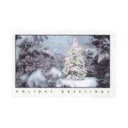 JAM Paper® Christmas Card Set, Holiday Greetings Lit Tree Modern, 10/Pack (W345)