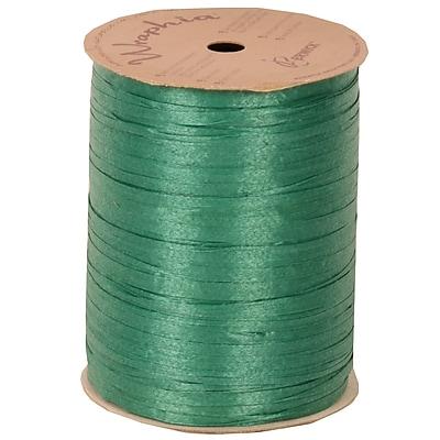 JAM Paper Wraphia Ribbon, Green, 100 yards,