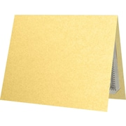 "LUX 9-1/2"" x 12"" Certificate Holders, Gold Metallic, 50/Pack (CH91212-M07-50)"