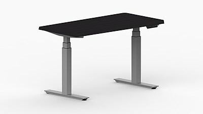 LifeFlo Ergonomics Height Adjustable Desk, 48