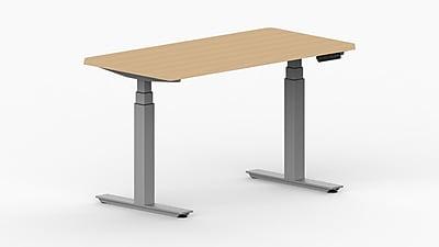 LifeFlo Ergonomics Height Adjustable Desk, 60