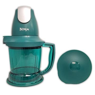 Ninja Refurbished 450 Watts Prep Blender-Emerald (QB751QE-RB)