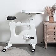 Loctek Flexispot Deskcise Pro Exercise Workstation, White (V9)