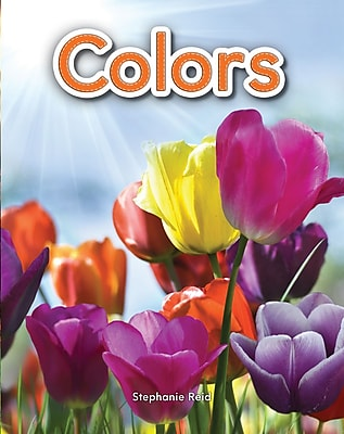 Teacher Created Materials Physical Book Colors Lap Book (13333)