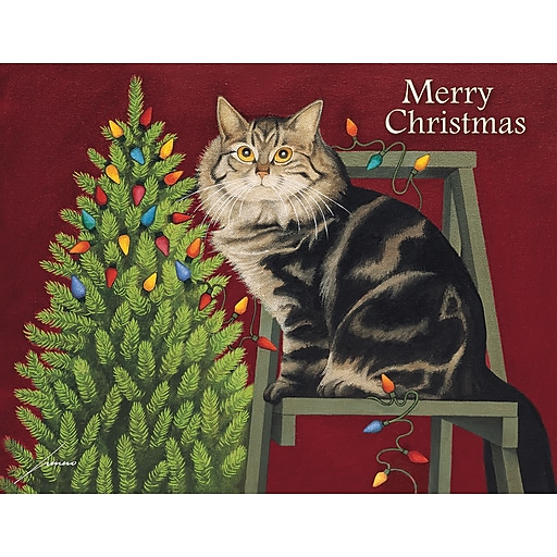 Boxed Cat Christmas Cards.Lang Stringing Lights Boxed Christmas Cards 1004833
