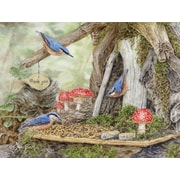 LANG FAIRY GARDEN BOXED NOTE CARDS (1005366)