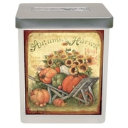 Lang Pumpkin Harvest Large Jar Candle - 23.5 oz. (3115005)