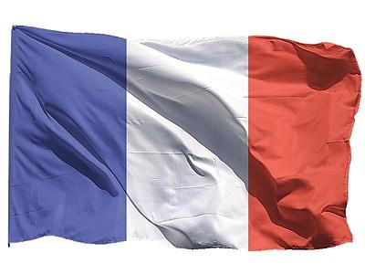 U.S. Flag Store France World Flag, 3' x 5', Nylon (60-100-70134)