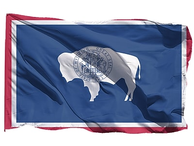 U.S. Flag Store Wyoming State Flag, 3' x 5', Nylon (64-100-10101)