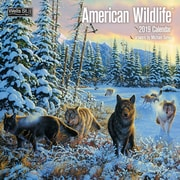 Wells St By Lang American Wildlife 2019 12X12 Wall Calendar (19997001720)
