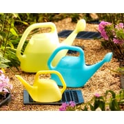 Bloem Watering Can, 1 Gallon, Bluebonnet (434017-4004)