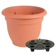 "Bloem Ariana Self Watering Planter, 6"", Terra Cotta (20-56106)"
