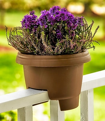 Bloem Deck Balcony Rail Planter, 12