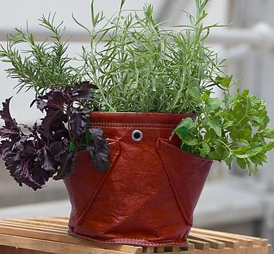 BloemBagz Mini Herb Hanging Planter Grow Bag, 1.5 Gallon, Union Red (MHP-12)