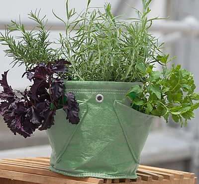 BloemBagz Mini Herb Hanging Planter Grow Bag, 1.5 Gallon, Living Green (MHP-42)