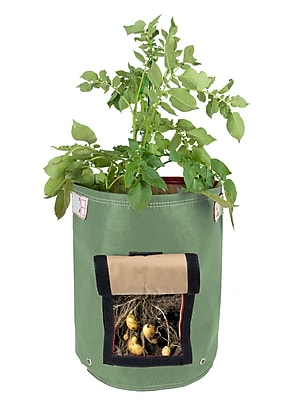 BloemBagz Potato Vegetable Planter Grow Bag, 9 Gallon, Living Green (POP-42)