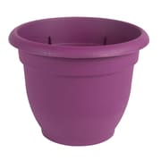 "Bloem Ariana Self Watering Planter, 8"", Passion Fruit (AP0829)"