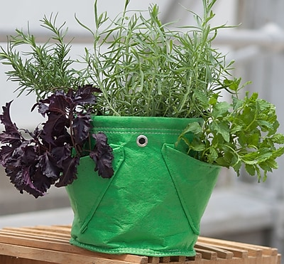 BloemBagz Mini Herb Hanging Planter Grow Bag, 1.5 Gallon, Honey Dew (MHP-25)