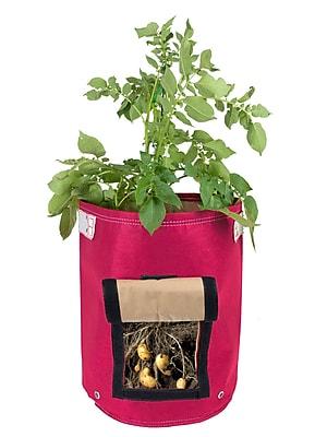 BloemBagz Potato Vegetable Planter Grow Bag, 9 Gallon, Amaranth (POP-22)