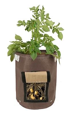 BloemBagz Potato Vegetable Planter Grow Bag, 9 Gallon, Chocolate (POP-45)